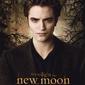 Zmierzch new moon edward trees - plakat