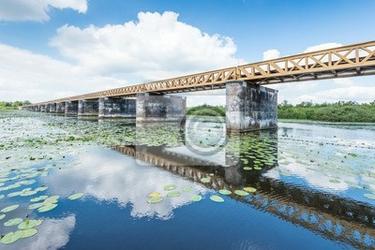 Fototapeta stary most w lecie holenderski
