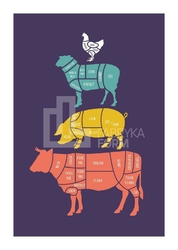 Plakat Meat Cuts kolorowy 50 x 70 cm
