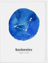 Plakat zodiak koziorożec 30 x 40 cm