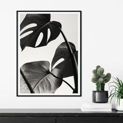 Plakat w ramie - monstera night , wymiary - 60cm x 90cm, ramka - biała