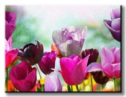 Piękne wiosenne kwiaty - obraz na płótnie