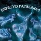Harry Potter Expecto Patronum - plakat z filmu