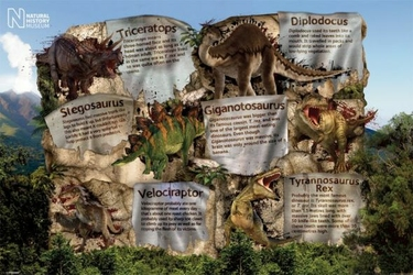 Natural History Museum Dinosaur Facts - plakat