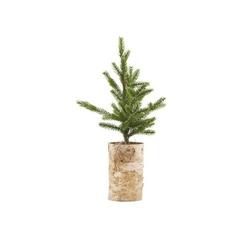 Christmas tree wlights house doctor