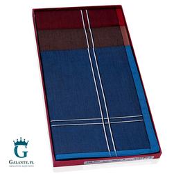 Kolorowe chusteczki bawełniane Guasch 10496.P004