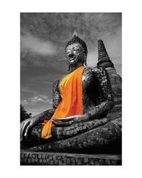 Budda - reprodukcja