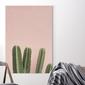 Obraz na płótnie - pastel cactus , wymiary - 70cm x 100cm