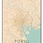 Tokio mapa kolorowa - plakat wymiar do wyboru: 61x91,5 cm