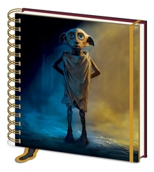 Harry potter dobby - notes