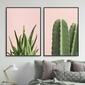 Zestaw dwóch plakatów - pink nature , wymiary - 20cm x 30cm 2 sztuki, kolor ramki - biały