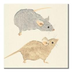 Timid mice - obraz na płótnie
