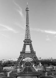 Paryż, wieża eiffel - fototapeta
