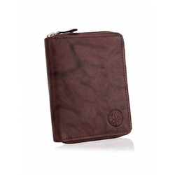Męski portfel betlewski bpm-gtan-76 brązowy