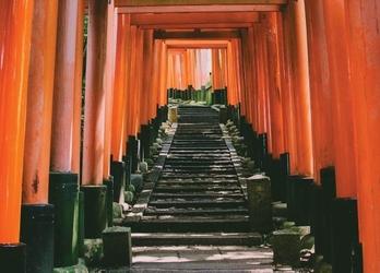 Tunel w kioto - fototapeta