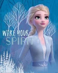 Frozen 2 wake your spirit elsa - plakat