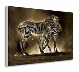 Zebra Grevys - Obraz na płótnie