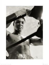 Muhammad Ali Ropes - plakat premium