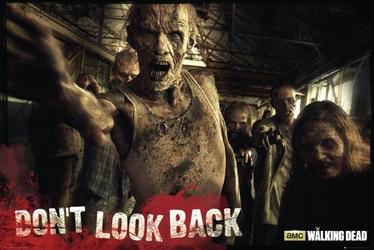 The Walking Dead - Zombie - plakat