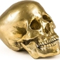 Dekoracja wunderkammer złota human skull