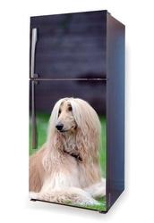 Fototapeta na lodówkę pies w trawie p1