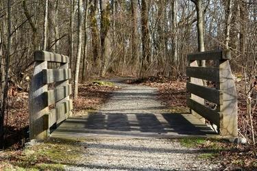 Fototapeta drewniany mostek prowadzący do lasu fp 1962