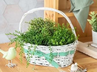 Koszyczek wiklinowy ozdobny na wiosenne kwiaty biały z zieloną wstążką altom design 32 cm