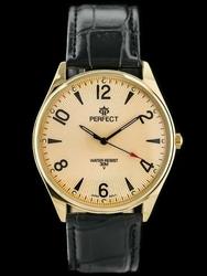 Męski zegarek PERFECT C141 - RAVE zp104i