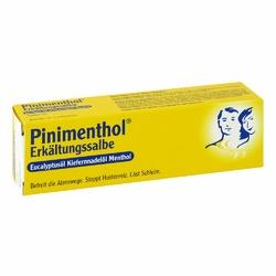 Pinimenthol Erkaelt.salbe Euckiefm Creme