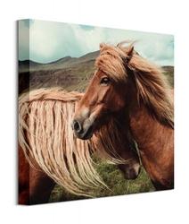 Horses with mane - obraz na płótnie