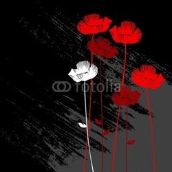 Obraz na płótnie canvas czteroczęściowy tetraptyk kwiatowy tło, mak z miejscem na tekst