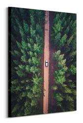Leśna droga - obraz na płótnie