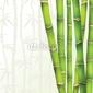 Board z aluminiowym obramowaniem bambus