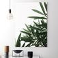 Obraz na płótnie - tropical beauty , wymiary - 70cm x 100cm