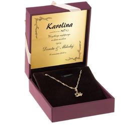 Złoty wisiorek motylek z łańcuszkiem pr. 585 walentynki dzień matki prezent z dedykacją