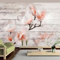 Fototapeta - subtelność magnolii