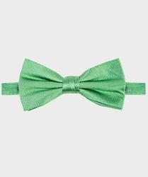 Zielona muszka jedwabna