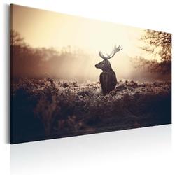 Obraz - przyczajony jeleń