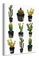 Cacti - obraz na płótnie