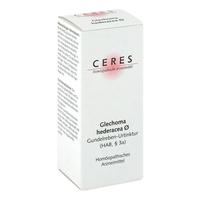 Ceres glechoma hederacea urtinktur