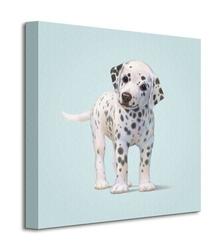 Dog - obraz na płótnie
