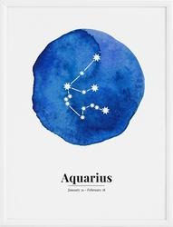 Plakat aquarius 70 x 100 cm