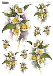 Papier ryżowy ITD A4 R387 kwiaty