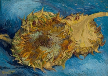 Sunflowers, vincent van gogh - plakat wymiar do wyboru: 40x30 cm