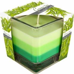 Bispol, świeca zapachowa trójkolorowa w szkle, zielona herbata, 1 sztuka