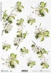 Papier ryżowy itd a4 r678 kwiat jabłoni