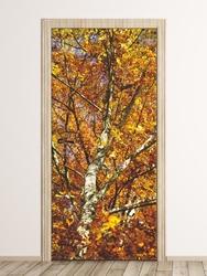 Fototapeta na drzwi jesienne drzewo fp 6071