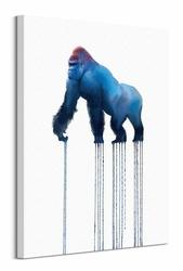Silverback Gorilla - obraz na płótnie