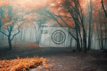 Fototapeta drzewa z czerwonych liści w lesie z mgły