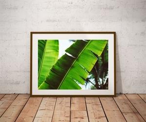 Leaf - plakat premium wymiar do wyboru: 50x40 cm